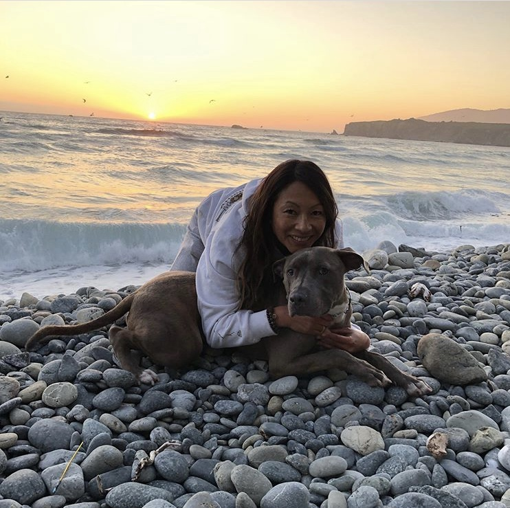 Our Team - Veterinarian and Animal Clinic in San Diego, CA